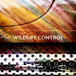 Wildlife Control Analog or Digital (Ille Gal Remix) Artwork
