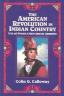 Download The American Revolution in Indian country